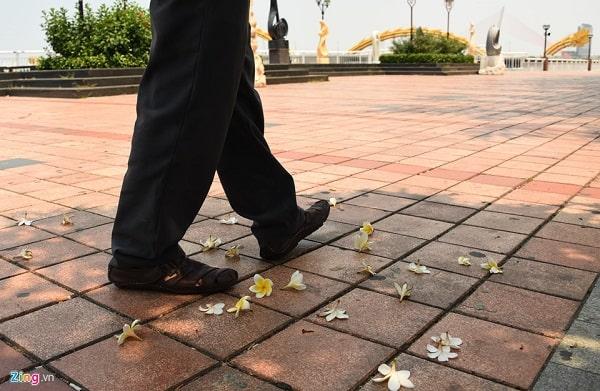 Vỉa hè lát gạch Terrazzo đường Bạch Đằng ở Đà Nẵng vẫn đẹp sau 20 năm. Nguồn: Zing.vn