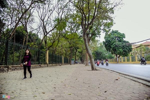 Vỉa hè đẹp với gạch block tự chèn lát vỉa hè phong cách hiện đại. Nguồn ảnh: Zing.vn